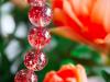 金草莓晶升值空间巨大,你知道现在金草莓晶多少一克吗?